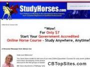 Online Horse/ Pony Courses - Government Approved Equine & Equestrian