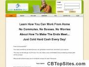 Work At Home Paid Surveys Cash Surveys Only