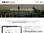 Learn Languages With Mosalingua