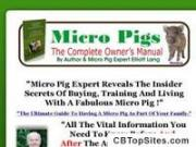 How to keep micro pigs.com - Home