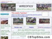 www.wiredfigs.com