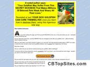 "How To Be An Amazing ""goldfish Expert"" - 70% Commission"
