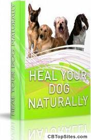 Heal Your Dog Naturally