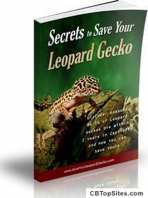 Save Your Leopard Gecko
