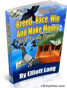 How To Race Pigeons - True Racing Secrets Revealed!