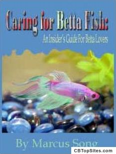 Betta Fish - Learn How to Give Your Betta a Great Life!