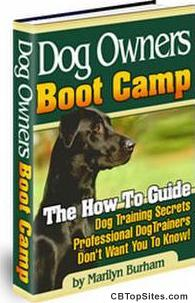 Dog Owners Boot Camp